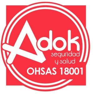 seguridad-y-salud-oshas-18001